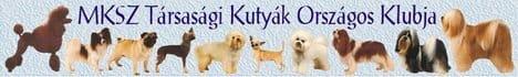 MKSZ Társasági Kutyák Országos Klubja